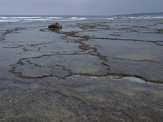 磯歩き-岩礁