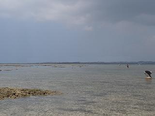 遠浅の干潟