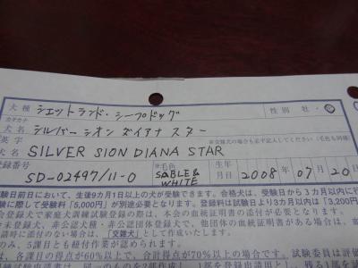 DSC04519_convert_20141219005052.jpg