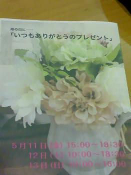 TS3V0208.jpg