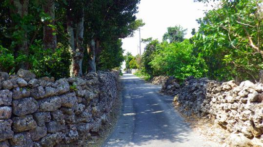 IMGP0346.jpg