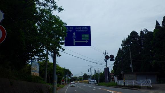 IMGP3281.jpg