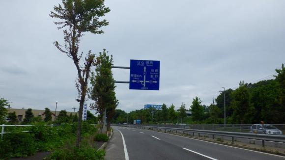 IMGP3795.jpg