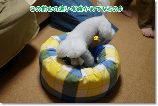ベッド修正3