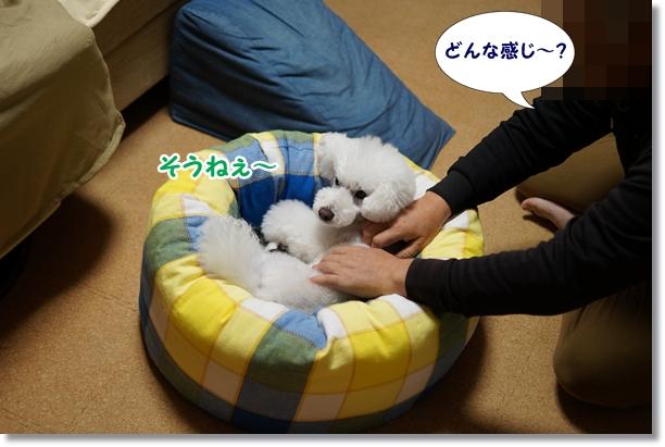 ベッド修正4