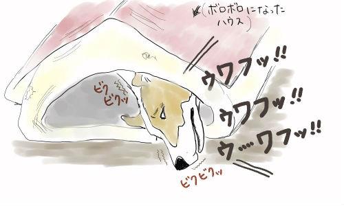シノン寝言.jpeg_copy