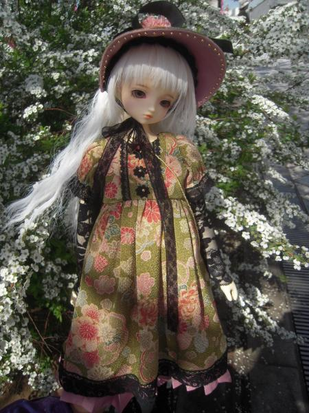 くるみ 桜3