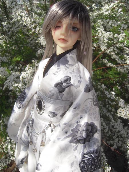レイズナー 桜6