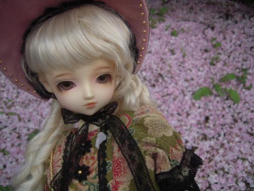 桜 くるみ2