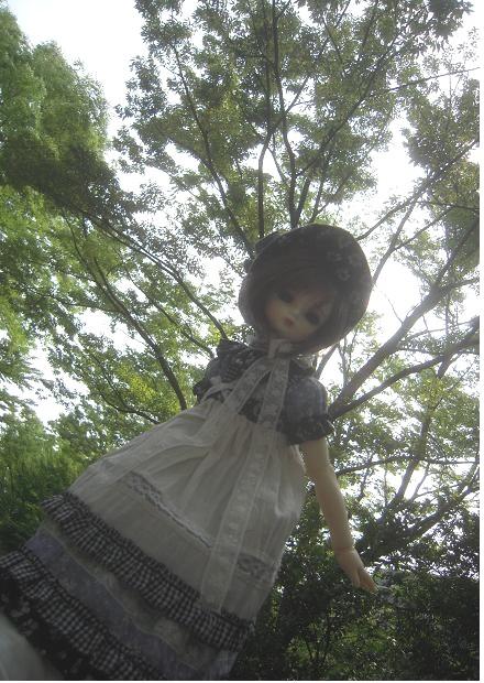 夏ドレス8a HODOO