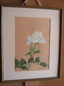 義母 水彩 白バラ