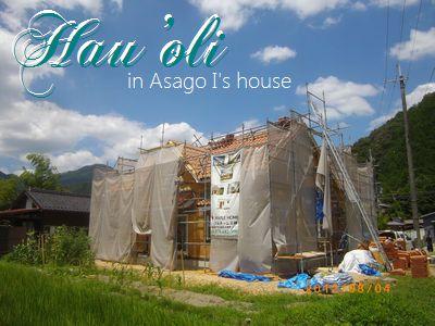 木たっぷりの家