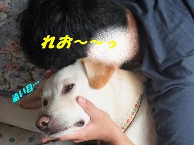 DSCF9360_201411292136219dc.jpg