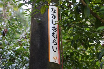 133_20121011212203.jpg
