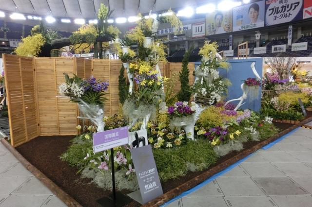 オープンクラス 奨励賞 国際園芸