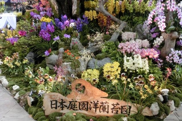 オープンクラス 特別奨励賞 栃木県洋蘭生産組合