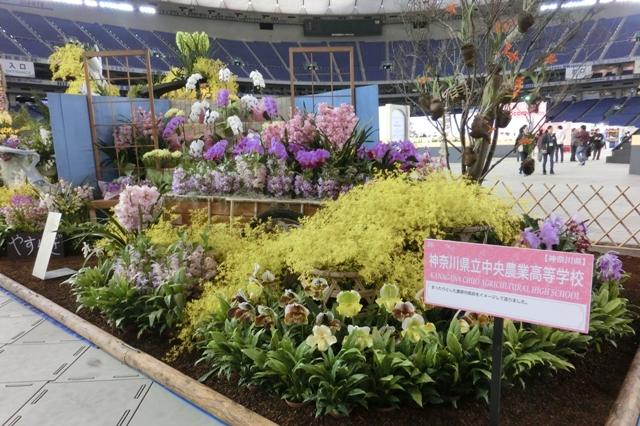 愛好家クラス 奨励賞 神奈川県立中央農業高等学校
