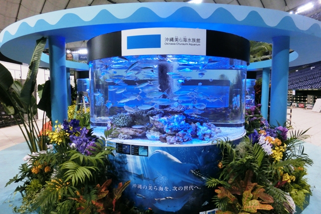沖縄美ら海水族館 沖縄の美の海を、次の世代へ
