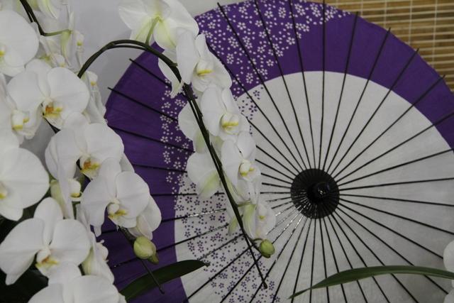胡蝶蘭を使ったディスプレイ(和のテイスト)