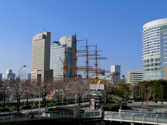 日本丸メモリアルパークとさくら通り周辺