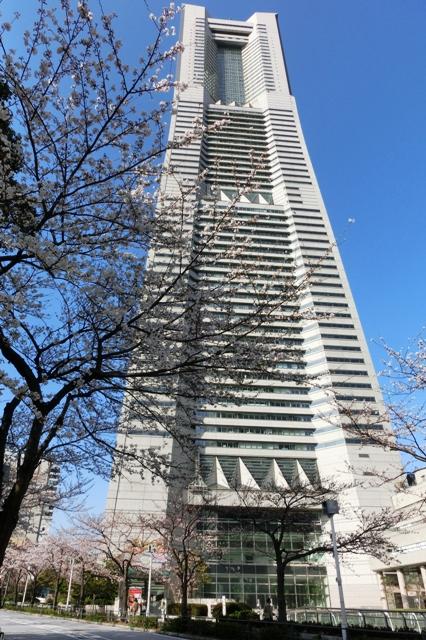 さくら通りから見た横浜ランドマークタワー