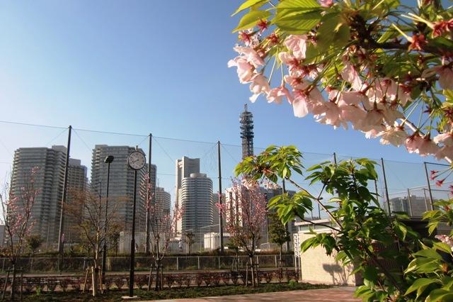 横浜F.マリノスタウン MM21トレーニングセンター