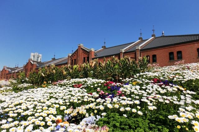 Flower Garden 2013