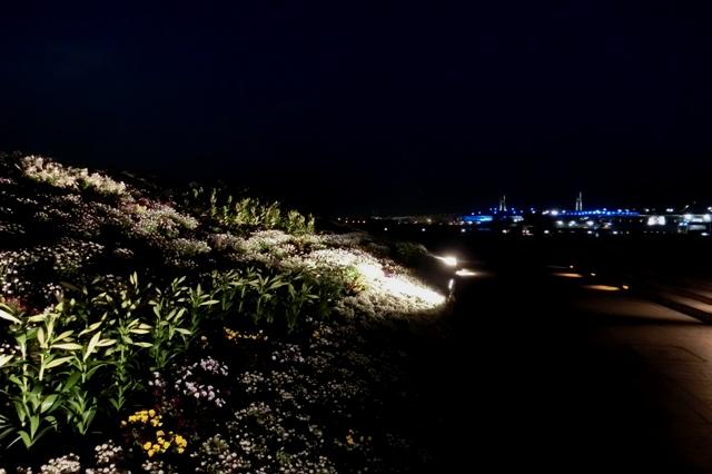 横浜レインボーブリッジと大桟橋