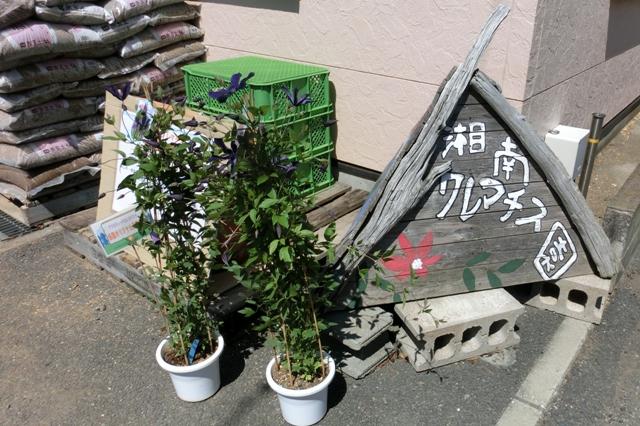 湘南クレマチス園 オープン農場(手作りの看板)