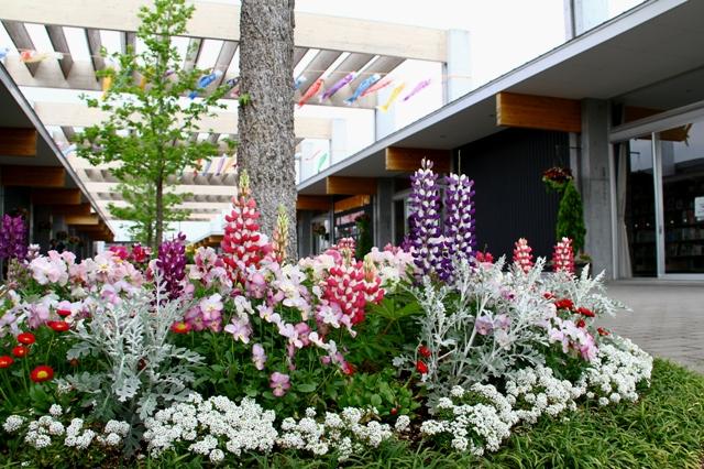 花菜ガーデンの入口