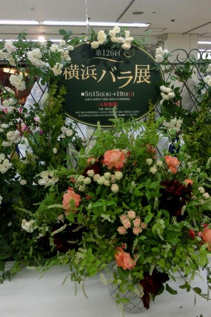 第126回 横浜バラ展