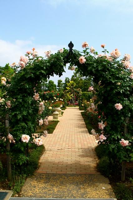 アーチの向こうはバラの花園