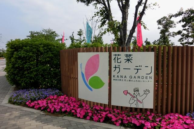 花菜ガーデン入口