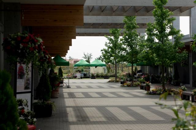 開園前の準備風景