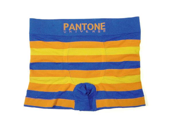 PANTONE1.jpg