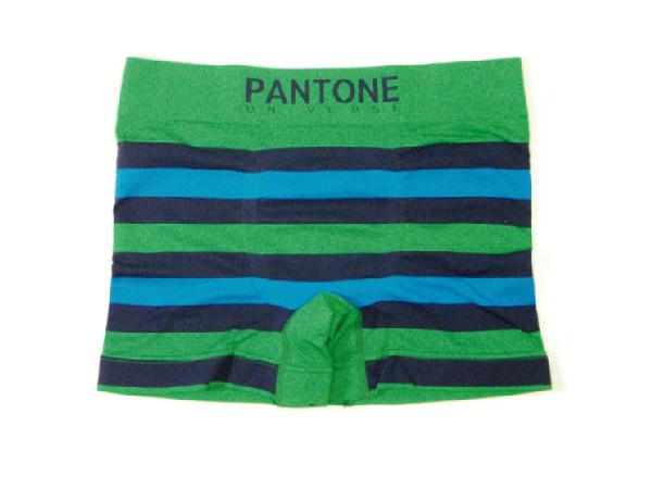 PANTONE3.jpg