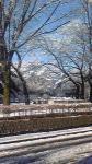 雪景色ーー1 (2)