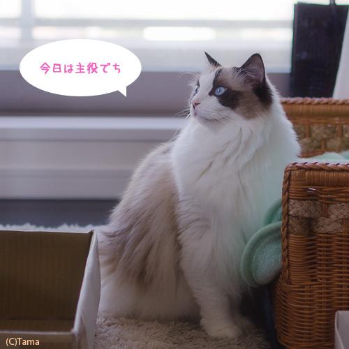20120613_01.jpg