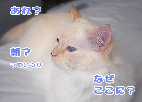 20120626_3.jpg