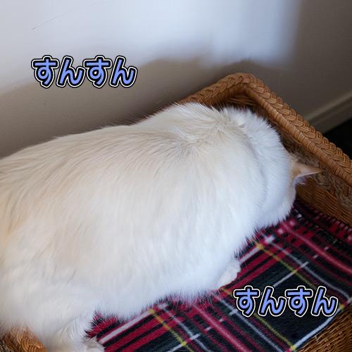 20120704_4.jpg