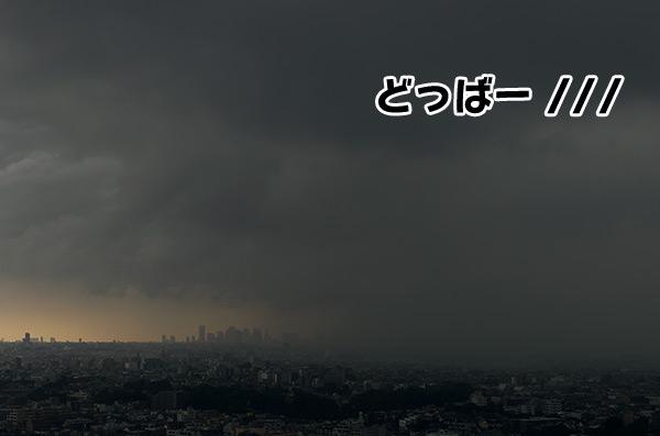 20120822_5.jpg
