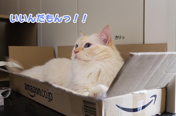 20120830_9.jpg