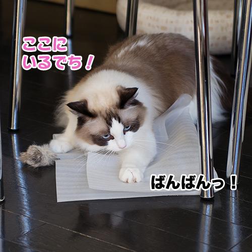 20120831_08.jpg