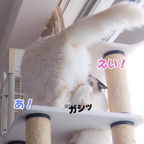 20121011_3.jpg