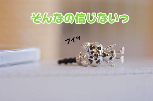 20121015_5.jpg