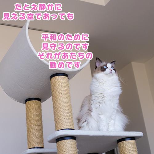 20121028_1.jpg