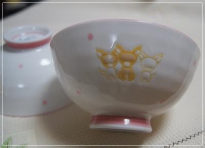 DSC02681-01.jpg