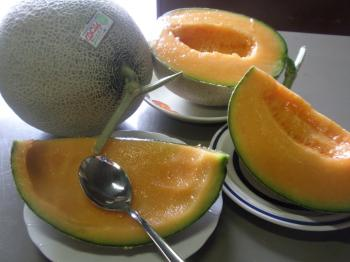 melon+054_convert_20120630192058.jpg