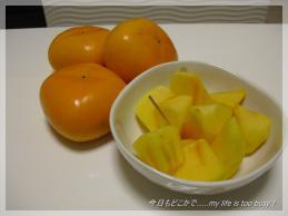 121109-1柿