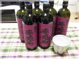 121111-1紫赤兎馬1